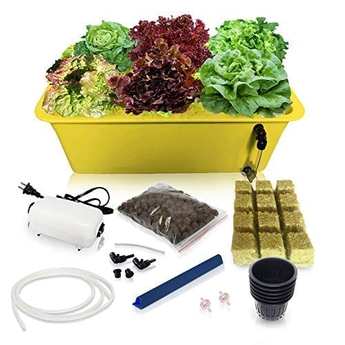 DWC Hydroponic System Growing Kit - Grow Supplies Large Airstone, Rockwool, 6 Site (Holes) Bucket with Air Pump - Complete Hydroponics Indoor Herb Garden Starter Kit for Kitchen - Grow Super Fast (6 Sites)