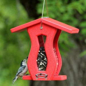 Finches Chickadees Hopper Bird Feeder Small Curved Red